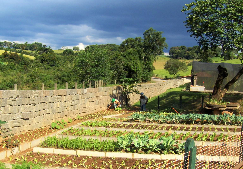 Produção de produtos orgânicos em horta - PR Grupo Paraná