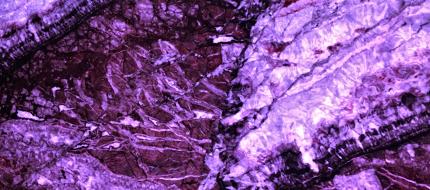 Mármore branco Fiori - Com luz